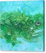 Frog And Fly Blues Canvas Print