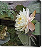 Frog In Awe Of White Water Lily Canvas Print