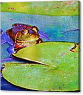Frog - On A Water Lily Pad Canvas Print