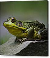 Frog Outcrop Canvas Print