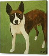 Frog The Dog Canvas Print