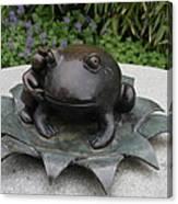 Frog Whisperer Canvas Print