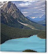 From The Lookout Canvas Print