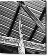 From The Rafters Canvas Print