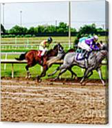 Front Runners 026mx Canvas Print