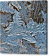 Frost Macro Canvas Print