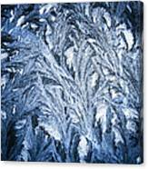 Frost On My Window Canvas Print