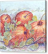 Frost on the Pumpkin Canvas Print