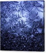 Frost on window #3 Canvas Print