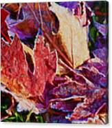 Frosted Leaves #2 - Painted Canvas Print