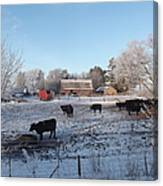 Frosty Barnyard Canvas Print