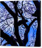 Frosty Blue Abstract Canvas Print