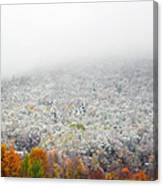 Frosty Fall Canvas Print