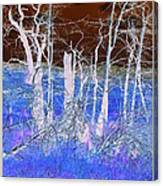 Frosty Forest Canvas Print