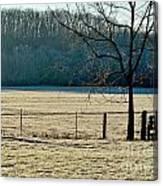 Frosty Morning Winter Landscape Canvas Print