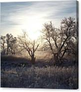 Frosty Rise Canvas Print
