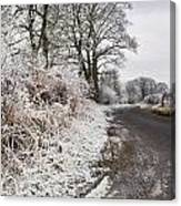 Frosty Road Canvas Print