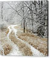 Frosty Trail 2 Canvas Print