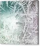 Frosty Windowpane Canvas Print