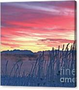 Frosty Winter Sunrise Canvas Print