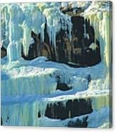 Frozen Artwork Canvas Print