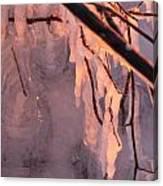 Frozen Branch Canvas Print