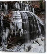Frozen Buttermilk Falls Canvas Print