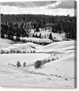 Frozen Creek Canvas Print