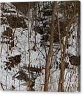 Frozen Dam Canvas Print