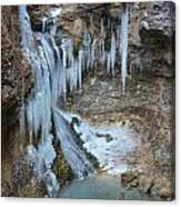Frozen Eden Canvas Print