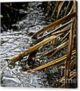 Frozen Edges And Ends Canvas Print