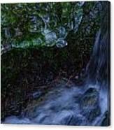 Frozen Garden Stream Canvas Print