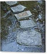 Slippery Stone Path Canvas Print