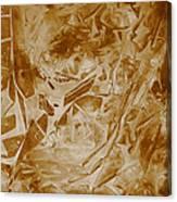Frozen Glow Canvas Print