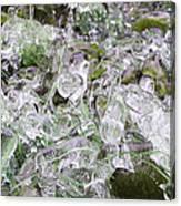 Frozen Green Canvas Print