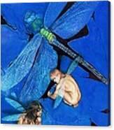 Frozen In Flight  @ Ariesartist.com Canvas Print