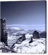 Frozen Landscape Canvas Print