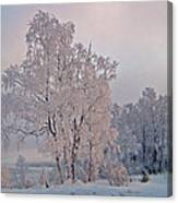 Frozen Moment Canvas Print