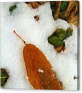 Frozen Nature - Digital Painting Effect Canvas Print