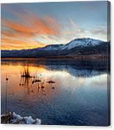 Frozen Reflections Canvas Print