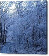 Frozen Road Canvas Print
