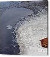 Frozen Rock Canvas Print
