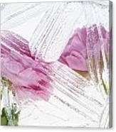 Frozen Spring Iv Canvas Print