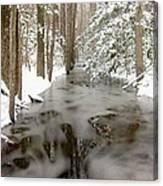 Frozen Stream Canvas Print