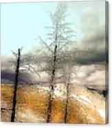Frozen Time II Canvas Print