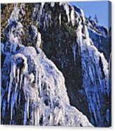 Frozen Waterfall On Oregon Central Coast Canvas Print