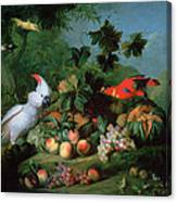 Fruit And Birds Canvas Print