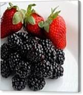 Fruit IIi - Strawberries - Blackberries Canvas Print