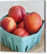 Fruit Stand Nectarines Canvas Print