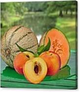 Fruits-garden Canvas Print